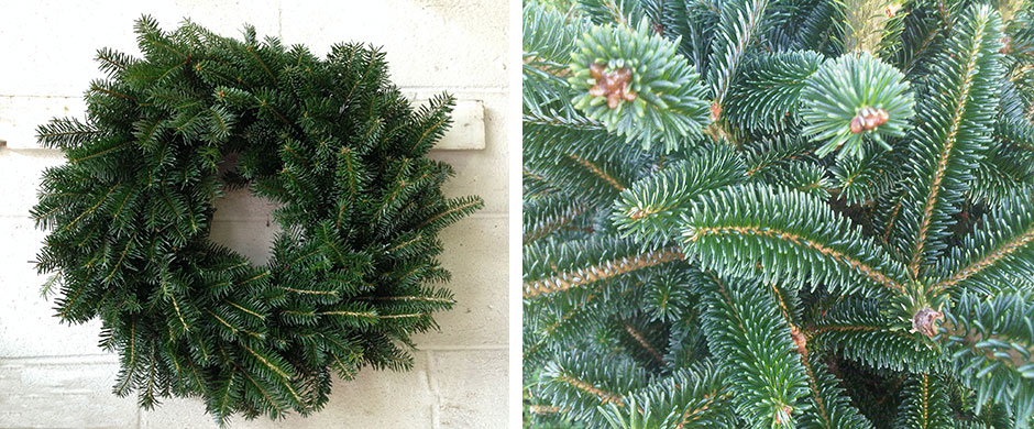 fresh christmas wreaths - Fresh Christmas Greenery